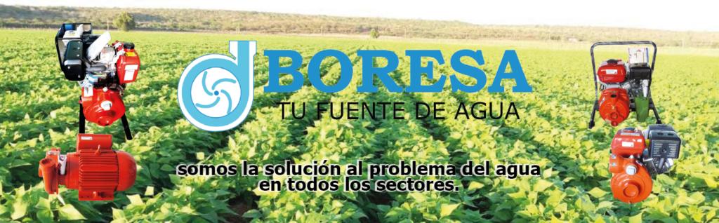 SOLUCION BORESA